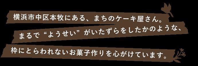 紹介メッセージ